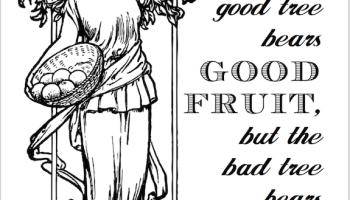 bearing good fruit coloring page