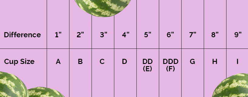 Measuring chart that determines your bra cup size