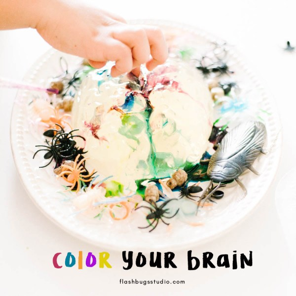 Color your brain with this amazing and awesome Halloween STEAM project. Your kids will ooh and ahh with this jiggly gelatin brain.