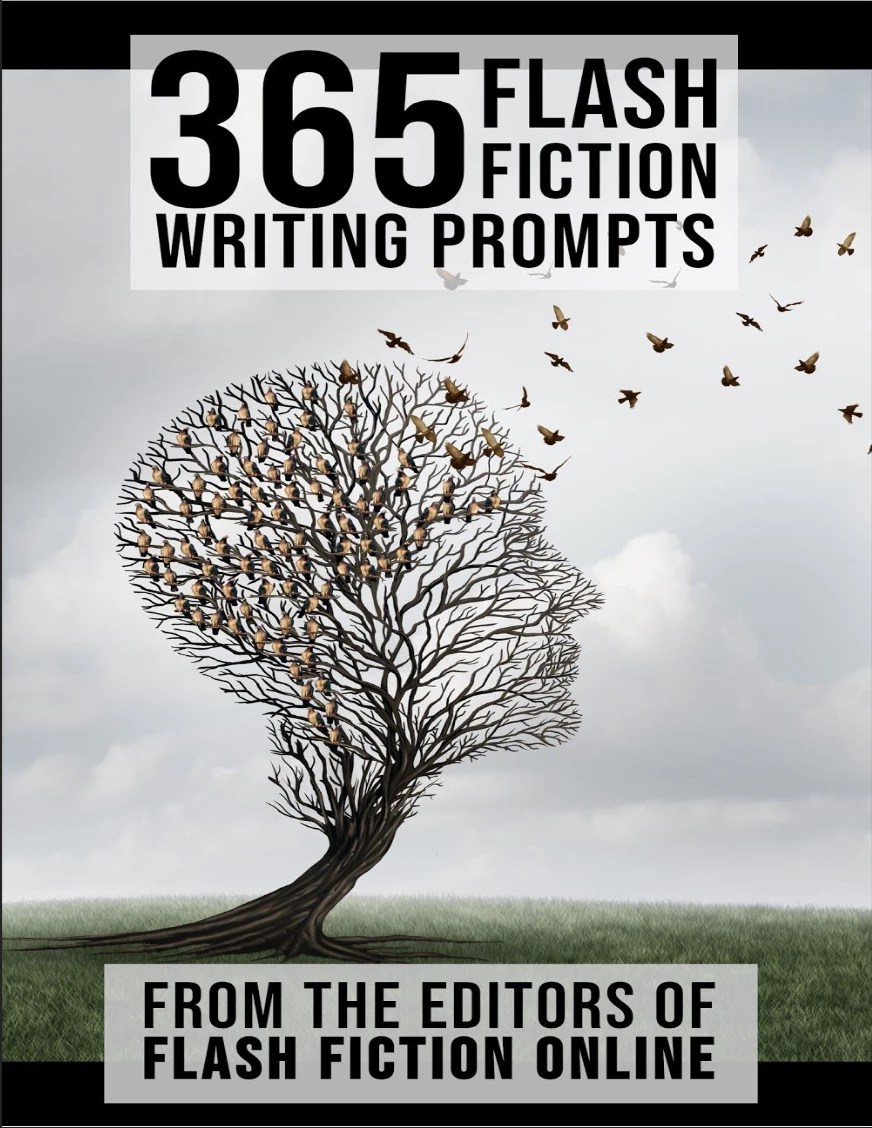 365WritingPromptsCover
