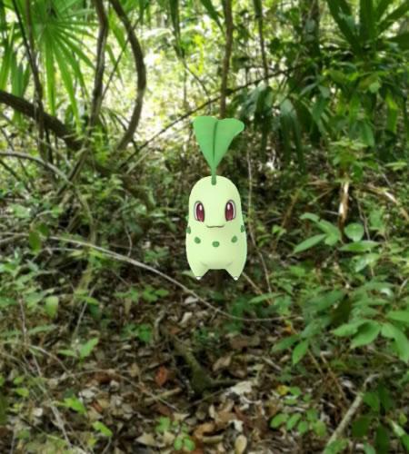 Pokemon-GO-AR-Photo-Contest-3