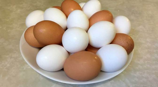 What Color Eggs Will That Chicken Lay?