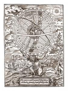 coelifer atlas