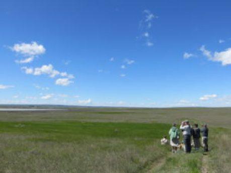Prairie Wanderers - Photo Credit: Kathy Ross