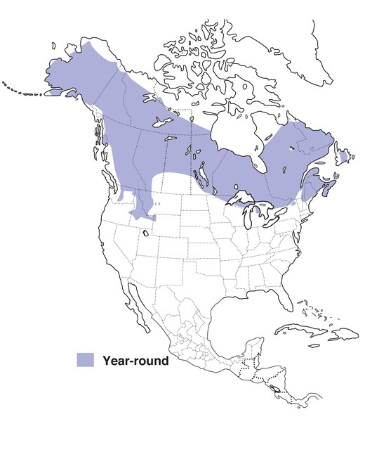 Spruce Grouse Range Map