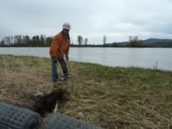 2014 5-3 Foys Bend Vol tree planting (4)