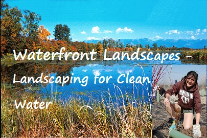 Landscaping For Clean Water