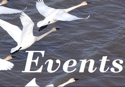 Events Flight