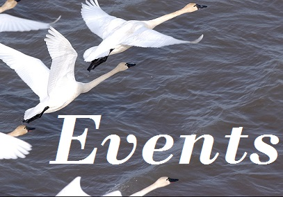Events Flight