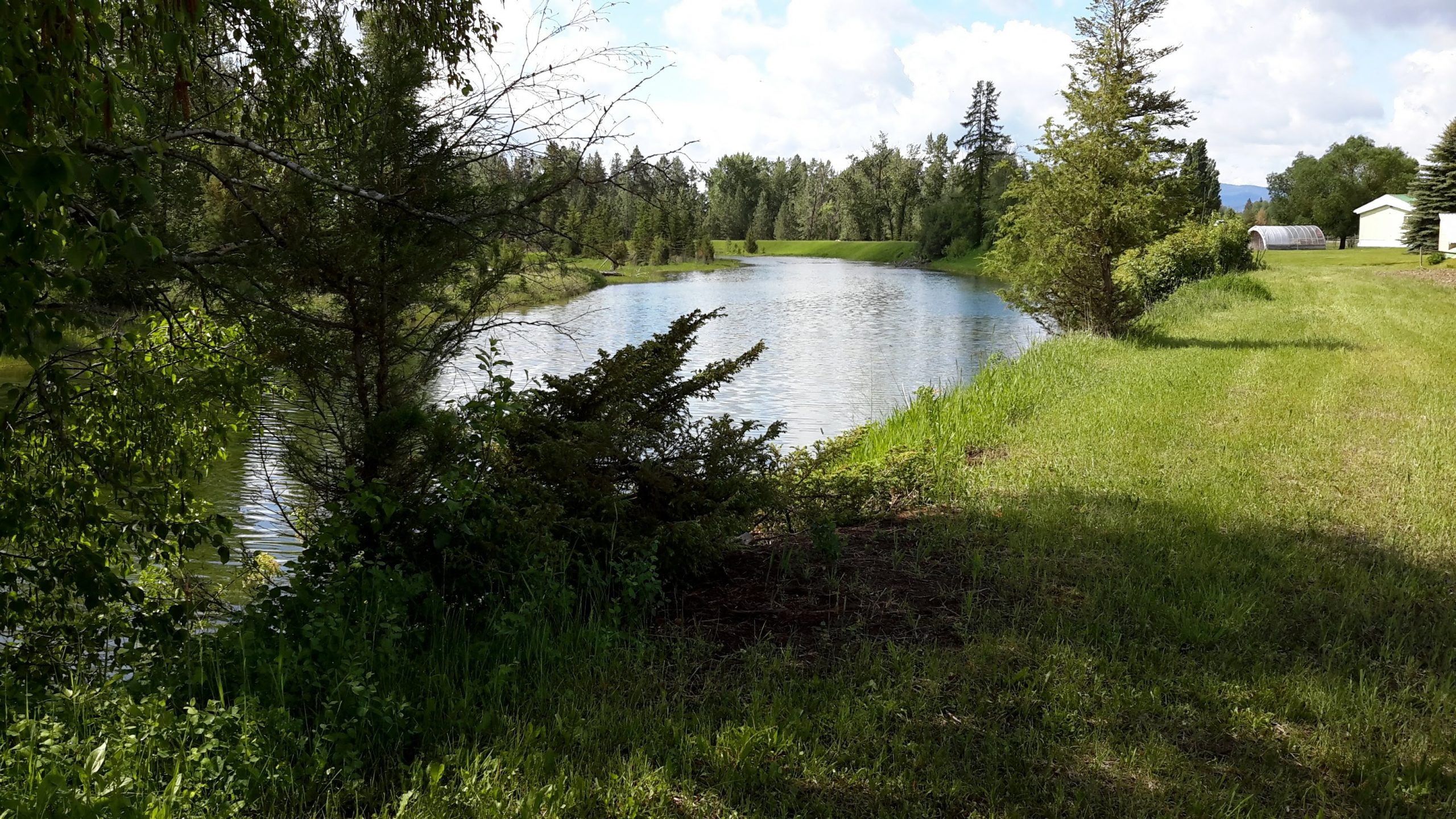 Goodrich Bayou Conservation Easement Protects Important Wildlife Values And Farm Soils Along The Flathead River Corridor