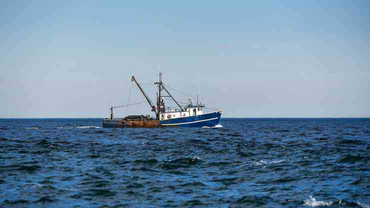 How Illegal Fishing Is Being Tracked From Space