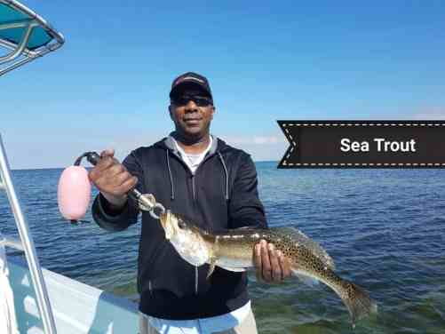 Local Fishing Report January 16th 2019
