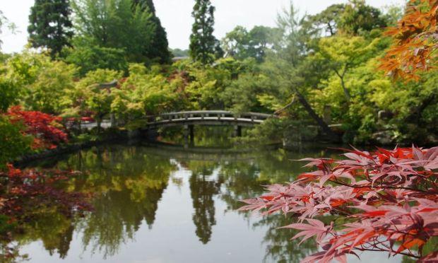 Kyoto_84