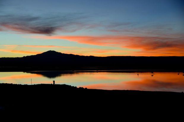 Reserva_dos_Flamingos_Atacama_19