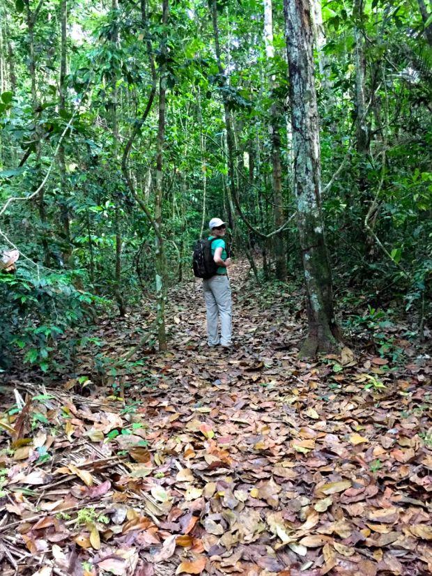 Cristalino_Lodge_Amazônia_141