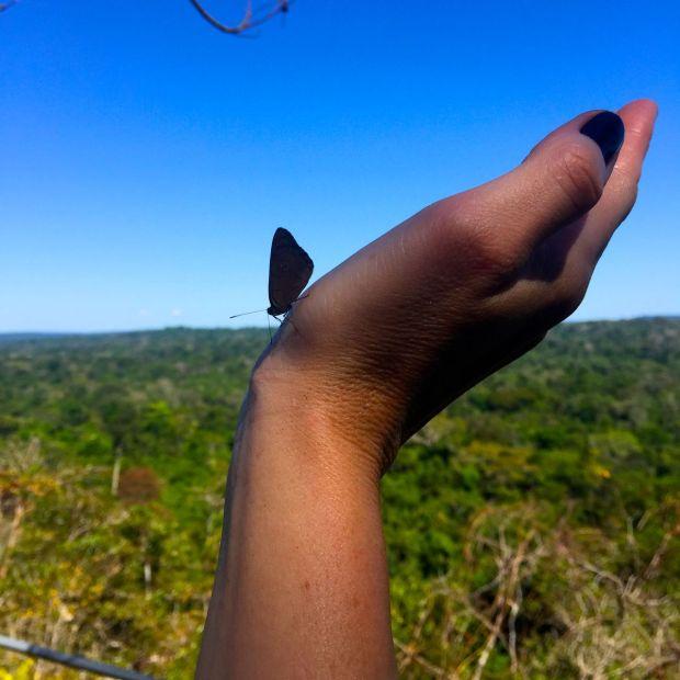Cristalino_Lodge_Amazônia_99