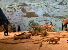 national-museum-doha-07