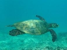 six-senses-zil-pasyon-felicite-island-seychelles-69
