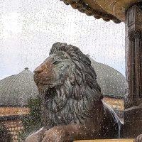 Skopje - Lions Statues