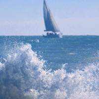 Ostia Lido - Sail the wind