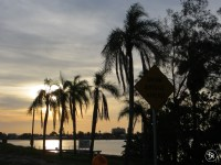 On the way to St. Petersburg, Florida