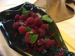 Aperitivo Gin mallol con frutas del bosque y ginebra