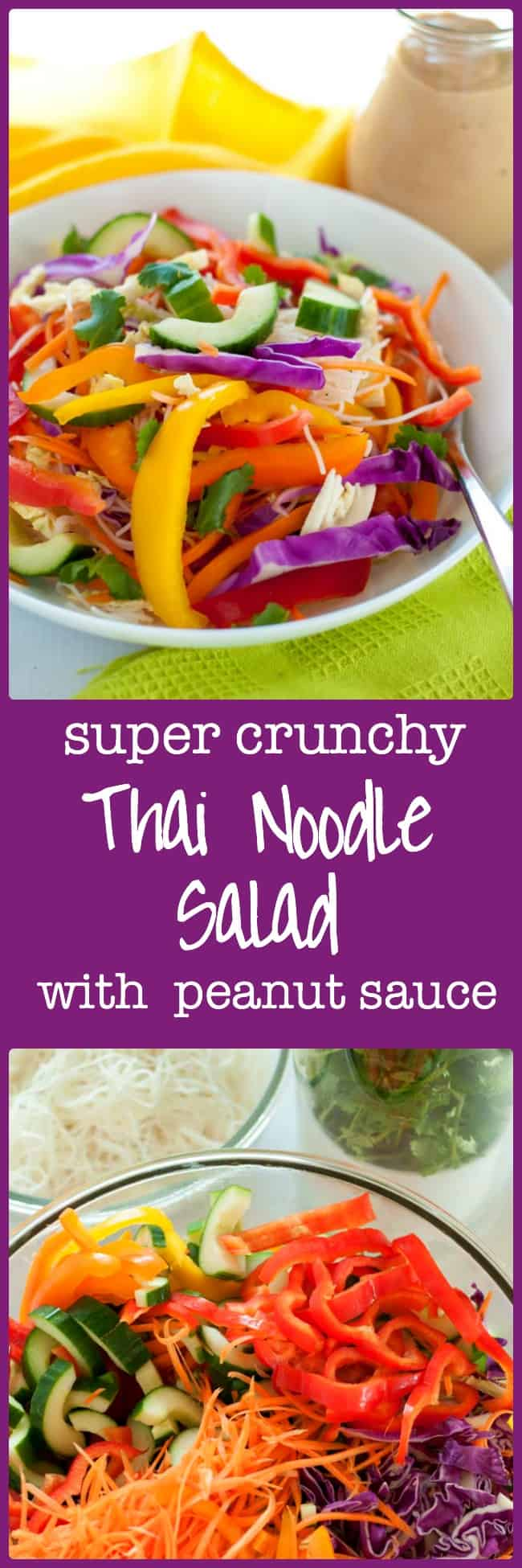 Super Crunchy Thai Noodle Salad with Spicy Peanut Sauce. Healthy enough for a weeknight meal, elegant and interesting enough for a dinner party. Perfect for potlucks! Serve it with chicken skewers or shrimp and make it a complete meal.