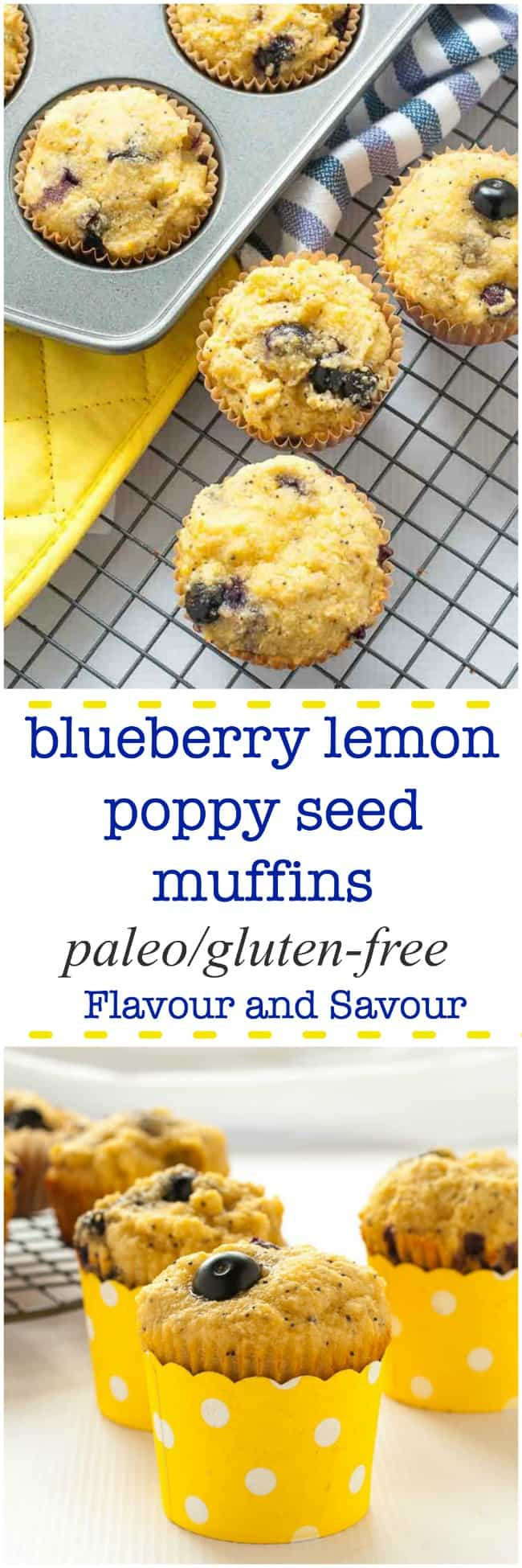 These Paleo Blueberry Lemon Poppy Seed Muffins are made with almond flour, honey, and fresh blueberries. They're light and lemony and they're gluten-free!