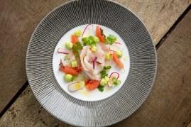 Wild Seabass Ceviche, grapefruit, radish citrus dressing