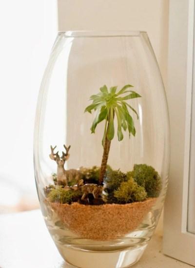 DIY Terrarium + A Sweet Plant's Little Story