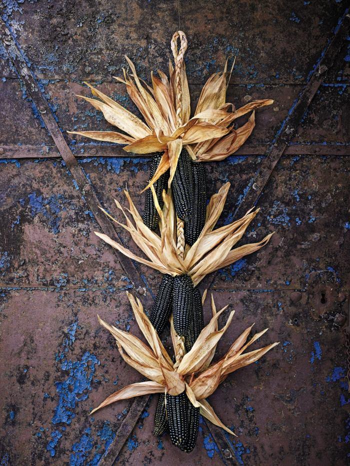 Dark Corn Stalk Decor