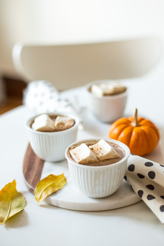Cayenne Cinnamon Hot Cocoa-2745