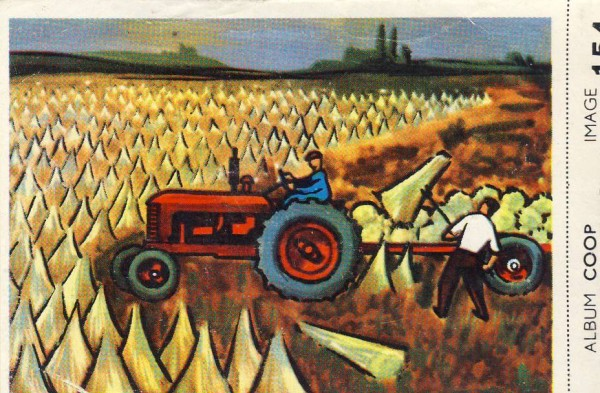 Cigarette card: harvesting flax
