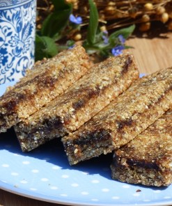Gooey Date and Quinoa Luxury Linseed Flaxjacks Pat-free Gluten-free Flapjacks