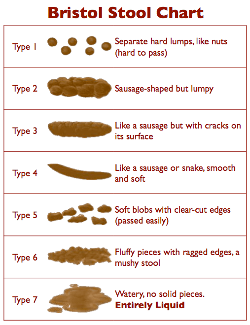 Bristol poo chart shows what healthy poo should look like