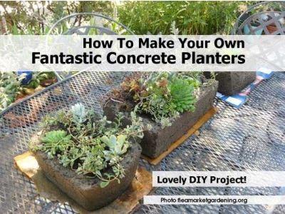 Concrete planters - Pin it!