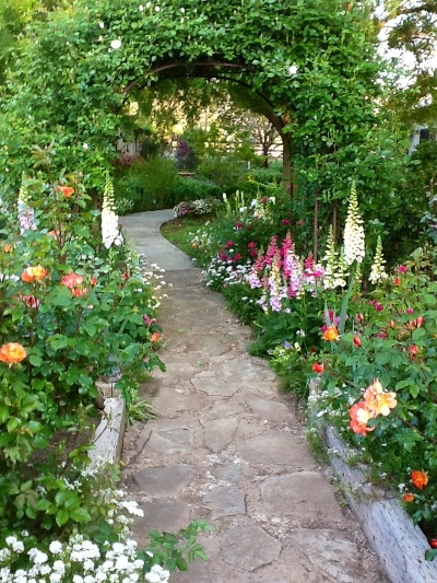 A path in Joy's garden. This Welcome Spring! Contest entry earned her an Honorable Mention.