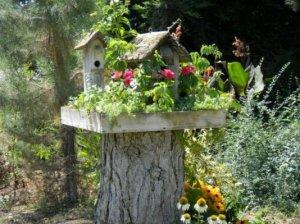 """""""My bird house, mounted on a stump"""""""