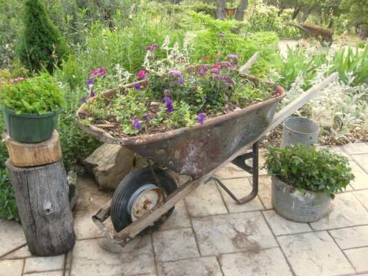 Newly planted with a few galvanized containers to match.
