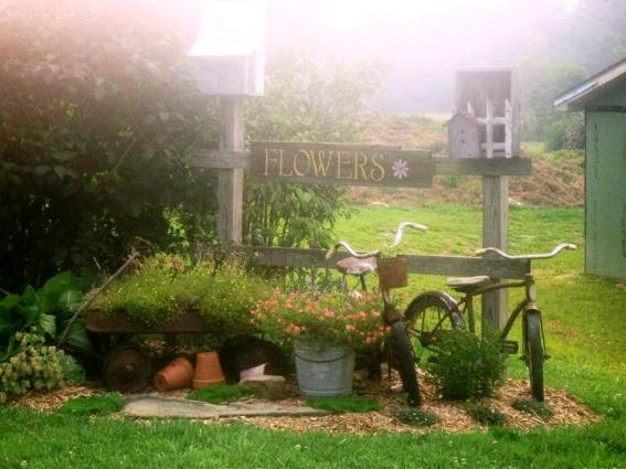 Tammy Prouty's bicycle vignette in early morning