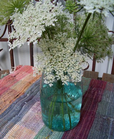 Julie Brown' jar of Queen Anne's Lace