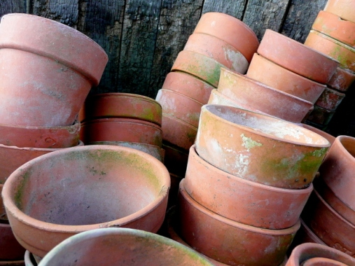 Lots of pots