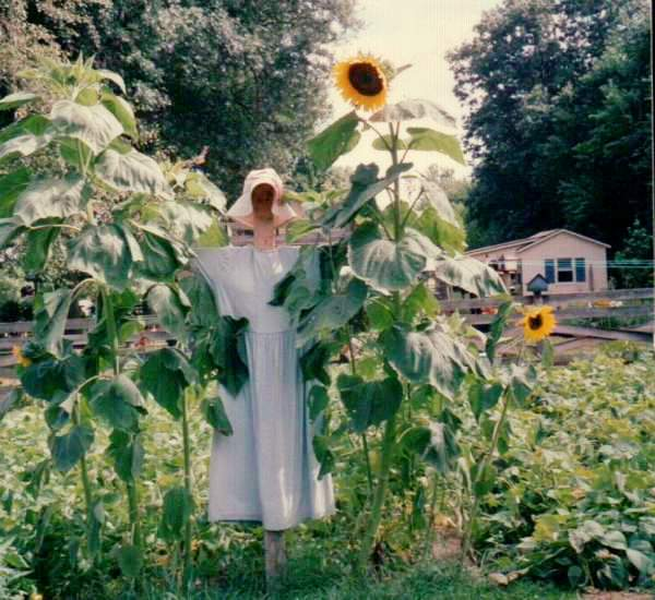 My scarecrow gal with sunflowers