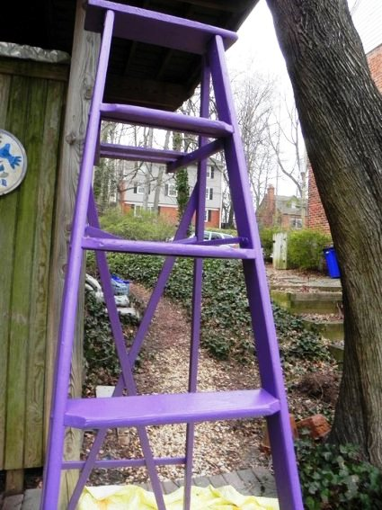 Beth Py-Lieberman's brightly painted ladder. Is that lavender?