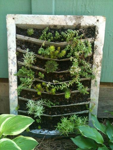 Cindy Barton's planted metal vent