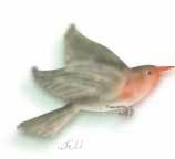 Robin flying