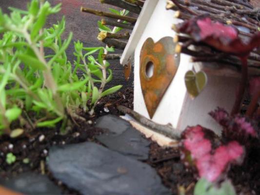 Tiny little heart house.