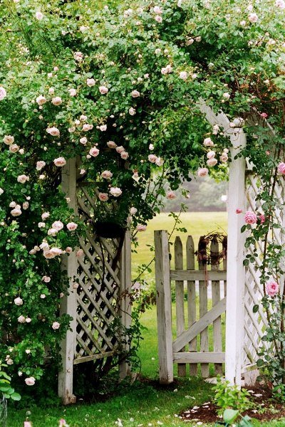 Carol Ross's pink rose covered archway could exist in any decade.