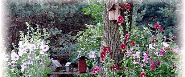 Jeanne Sammons Vintage garden