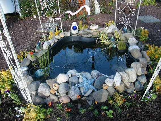 Close up of the pond